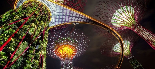 gardens-by-the-bay-supertrees-light-show-opens-147715289-58eb80299bbdf